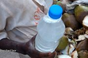 Coconut Vendor Filling Bottle with Coconut Water | Healthy Natura...