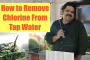 HOW to Test Tap Water for Chlorine | Howto Save Fish from Chlorin...