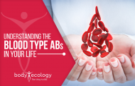 Body Ecology blood type series: Living life as an AB...