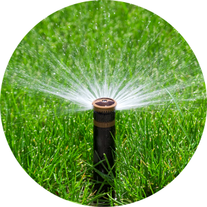 Methods and Technologies for Curbing Outdoor Water Waste...