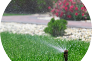 Spring Water Saving Tips to Help Beat the Heat...