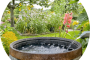 Eco-Friendly Water Use Outside the Home...