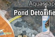 Turning Tap Water into Pond Water with Aquascape's Pond Detoxifie...