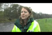 Healthy rivers: What WFD means for river life...